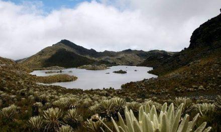 La delimitación del Páramo de Santurbán beneficia a la minería