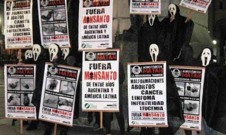 Amparo a favor de asambleístas paraliza la obra de Monsanto