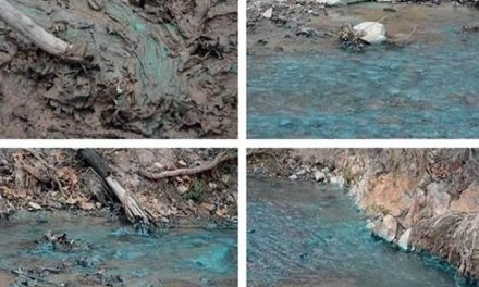 Minera Peñoles contamina en Sonara el arroyo Milpillas