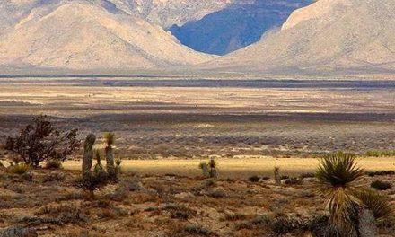 Sacan a Samalayuca de área protegida para otorgarla a la minería