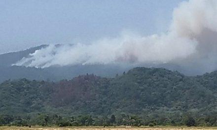Religiosos acusan a Minera Falcondo de estar tras incendio de 5.000 has. de bosque