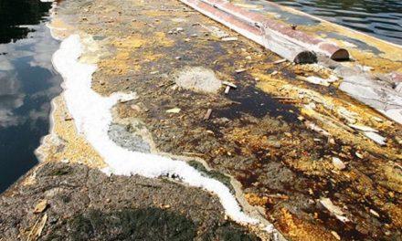 Minera canadiense derrama 4.500 litros de tóxico en Guanajuato