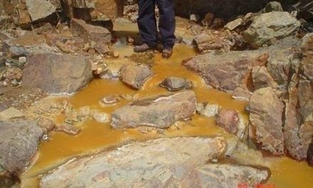 Realizarán nuevos análisis para determinar niveles de plomo en sangre a pobladores de Hualgayoc