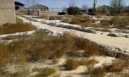 Laboratorio de mineras arroja sus desechos por la medianera y matones golpean a vecino que filmaba
