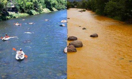 Un catastrófico derrame tóxico minero mancha de amarillo un río en Colorado