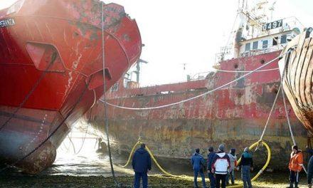 Sin datos oficiales sobre el daño ambiental en Puerto Madryn