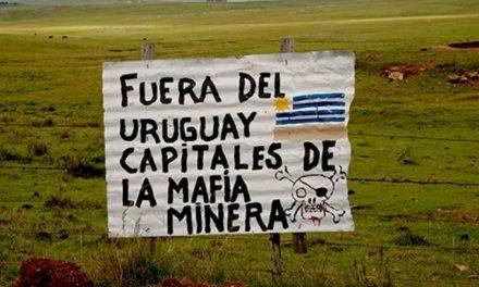 Minera Aratirí retiene títulos mineros en Uruguay y se prepara para hibernar