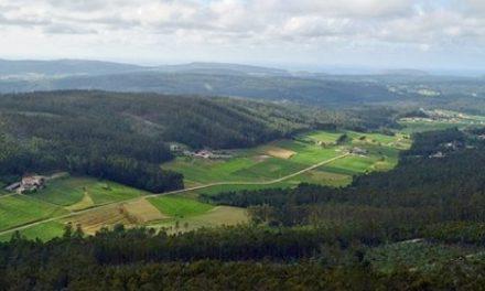 Minera canadiense exige a España una indemnización millonaria por la fallida mina de Corcoesto