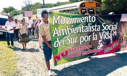 Protestan contra plantas solares por la deforestación y minería por la contaminación