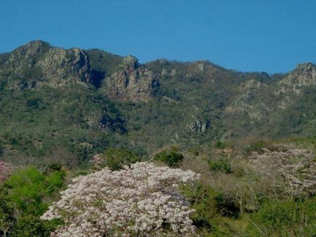 'Reviven' mina Caballo Blanco con proyecto minero El Cobre