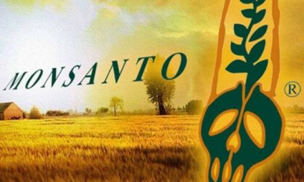 Monsanto será llevada a juicio en el 2016 por crímenes de lesa humanidad en el Tribunal Internacional de La Haya