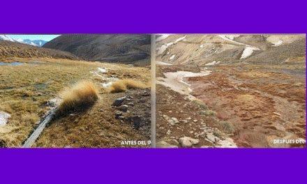 Dos organismos de la ONU sostienen que la minera Barrick Gold contaminó en San Juan