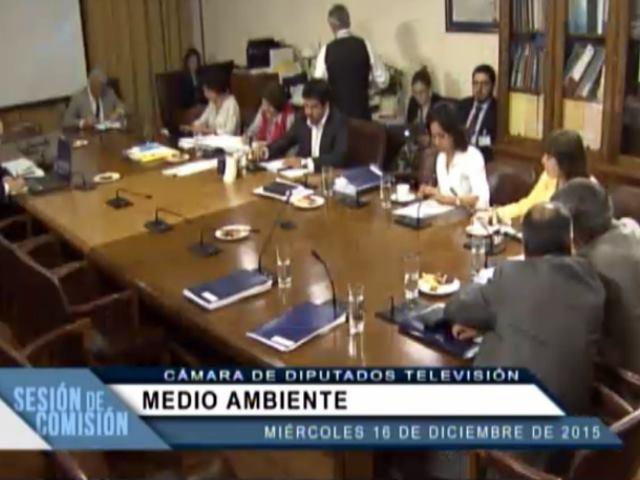 Contra la opinión del gobierno, los diputados proponen que Mineras no intervengan en Glaciares de Parques Nacionales
