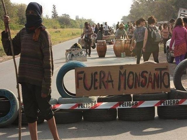 Termina la feria judicial y hay vigilia por orden de desalojo del acampe contra Monsanto