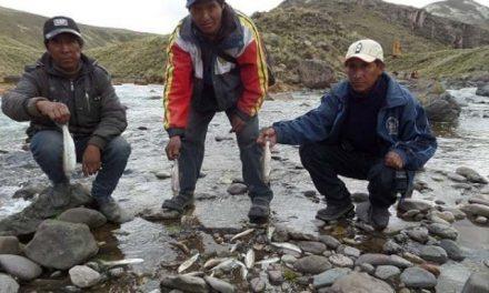 Pobladores de Puno piden retiro de minera Aruntani de Lampa-Melgar por grave contaminación