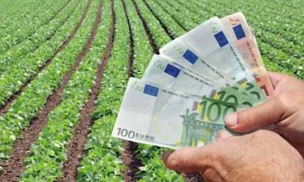 INTA: El modelo de agronegocios atenta contra el sistema agroalimentario