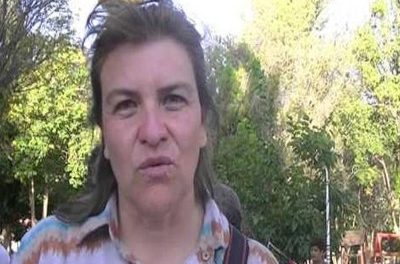 Parlamentaria del Mercosur pedirá la renuncia del nuevo subsecretario de Minería de la Nación