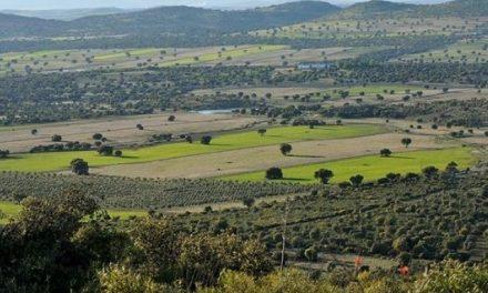 La minería de tierras raras amenaza La Mancha