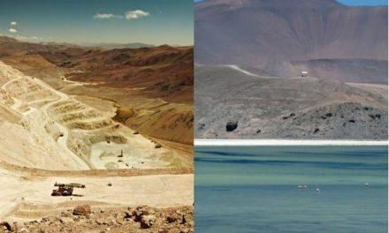 La corporación que provocó el desastre ambiental del Humedal Valle Ancho (Chile) y su vínculo con Mendoza