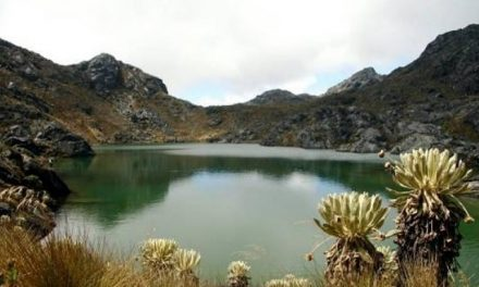 Blindan de la minería unas 100.000 hectáreas y delimitan ocho páramos