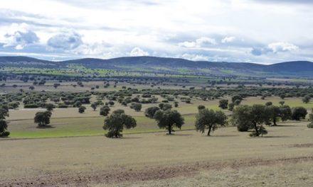 Piden al Gobierno regional el archivo del estudio de impacto ambiental de Tierras Raras