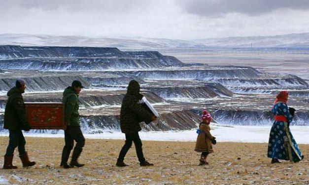 Minería amenaza vida silvestre de Mongolia