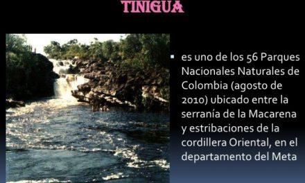 Preocupación por área de exploración minera a 2,5 kilómetros de una reserva natural