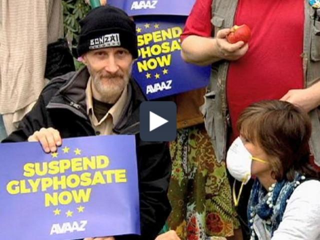 La Unión Europea no renovó la autorización para el uso del glifosato