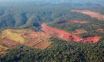 Explotación del arco minero podría destruir las selvas en 50 años
