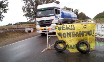 Cómo es la demanda colectiva al Estado, Monsanto y las corporaciones sojeras