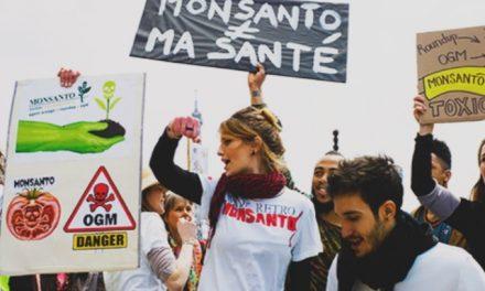 Monsanto es derrotada y retira sus transgénicos de Europa