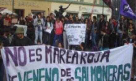 De la marea roja a la marea humana o 5 razones del movimiento social de Chiloé