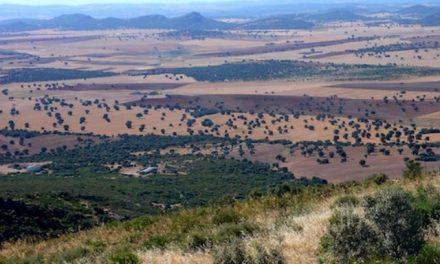Organizaciones agrarias, colectivos sociales, vecinos y ecologistas se unen contra la minería de tierras raras en Castilla-La Mancha