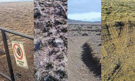 """Patagonia Gold invade una estancia: """"El daño ambiental que han hecho es terrible"""""""