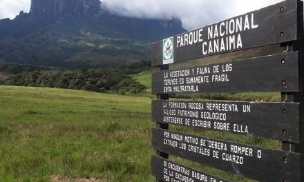 Arco Minero del Orinoco amenaza el Parque Nacional Canaima