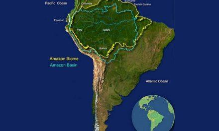 El Amazonas tiene más 6 mil solicitudes para explotación minera