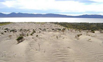 Alertan sobre la grave desertificación del lago Colhue Huapi y el descenso del Musters