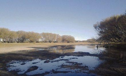 Un año más de sequía: Alerta para la población de Chubut