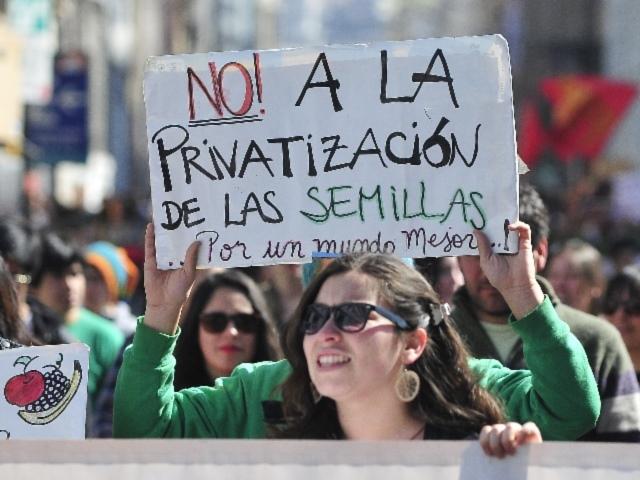 Campesinos, agricultores y ambientalistas en alerta ante la nueva Ley de Semillas en Argentina