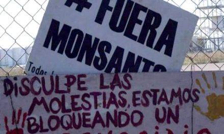 Planta de Malvinas en venta: la vida sin Monsanto