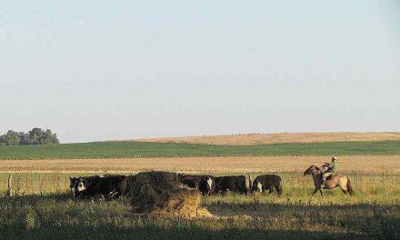 La agroecología tiene gran futuro y un campo bonaerense es reconocido por la FAO