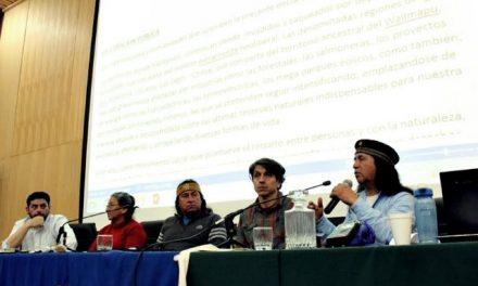 De Mar a Mar: A defender colectivamente el Wallmapu del saqueo y explotación extractivista