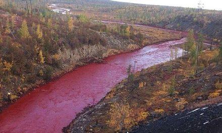Un río se tiñe de rojo en Rusia por contaminación
