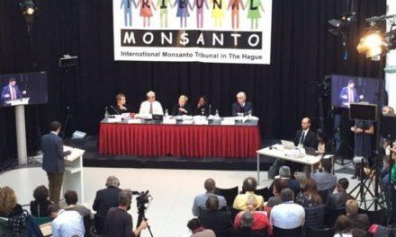 Monsanto en el banquillo de La Haya: El ecocidio como delito penal internacional