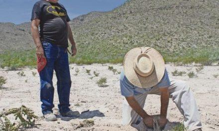 Organismos de derechos humanos piden cancelar permisos a mineras en la montaña