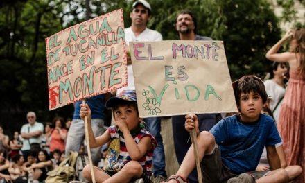 Por otra Ley de Bosques para Córdoba: verdadera participación ciudadana por una Ley que proteja el bosque y la vida