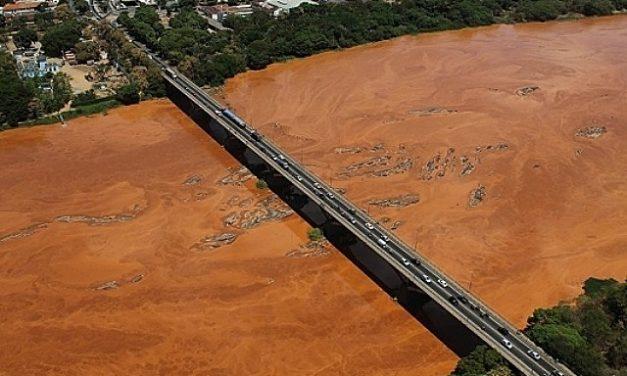 Encuentran miles de peces muertos en la región del desastre minero en Brasil