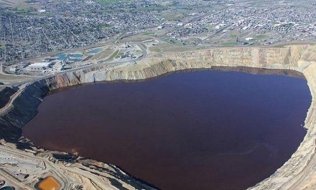Mueren miles de gansos envenenados en el tajo a cielo abierto de mina con aguas tóxicas en Montana