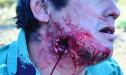 Otro día de furia en torno a los mapuches