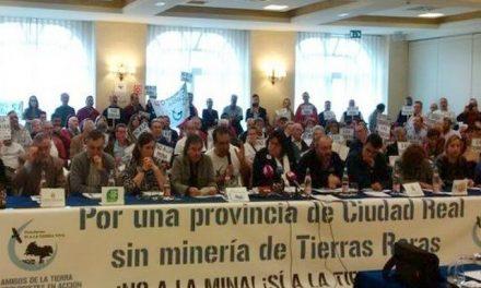 """'Sí a la Tierra Viva' denuncia """"irregularidades"""" de Quantum Minería para aprobar proyectos de tierras raras"""